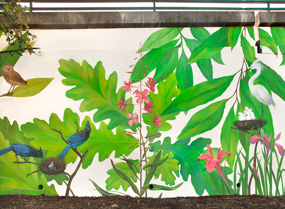 Mural Native Birds And Plants Of Northern California