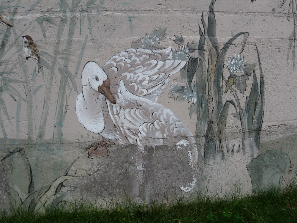 Outdoor_Mural_birds (4)