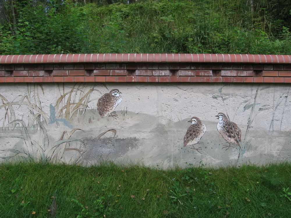 Outdoor_Mural_birds (5)