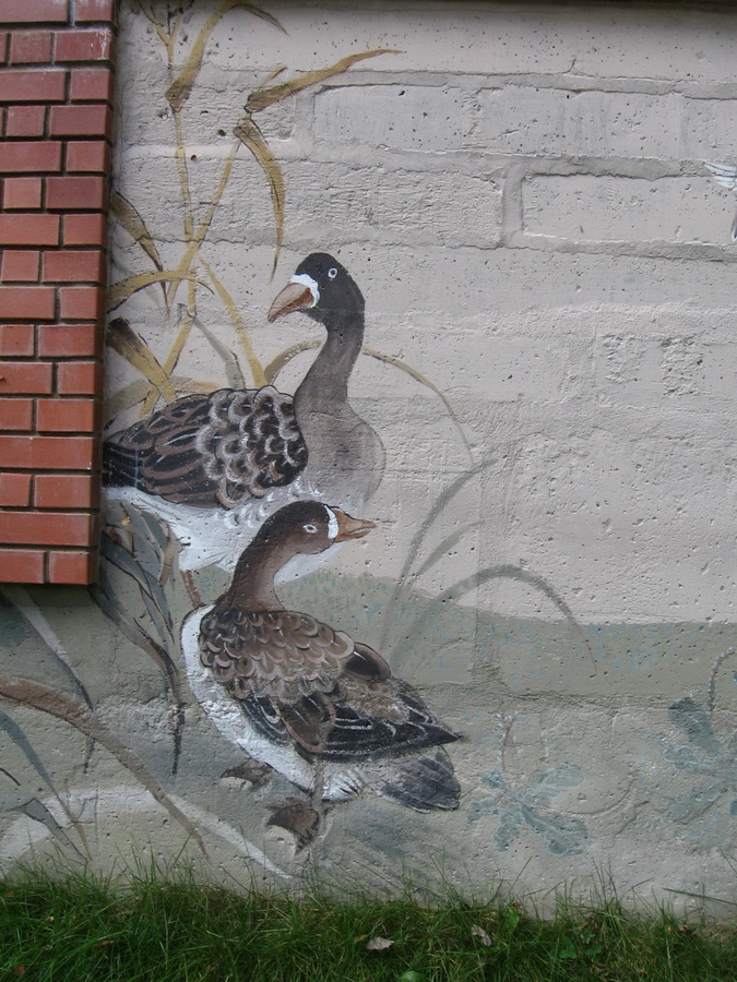 Outdoor_Mural_birds (9)