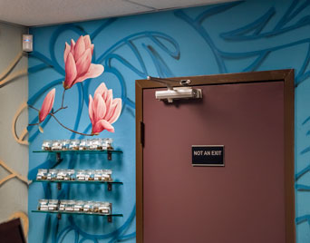marijuana dispensary mural Port of Oakland, Bay area muralist, Yulia Avgustinovich hand painted wall murals, decorative painting