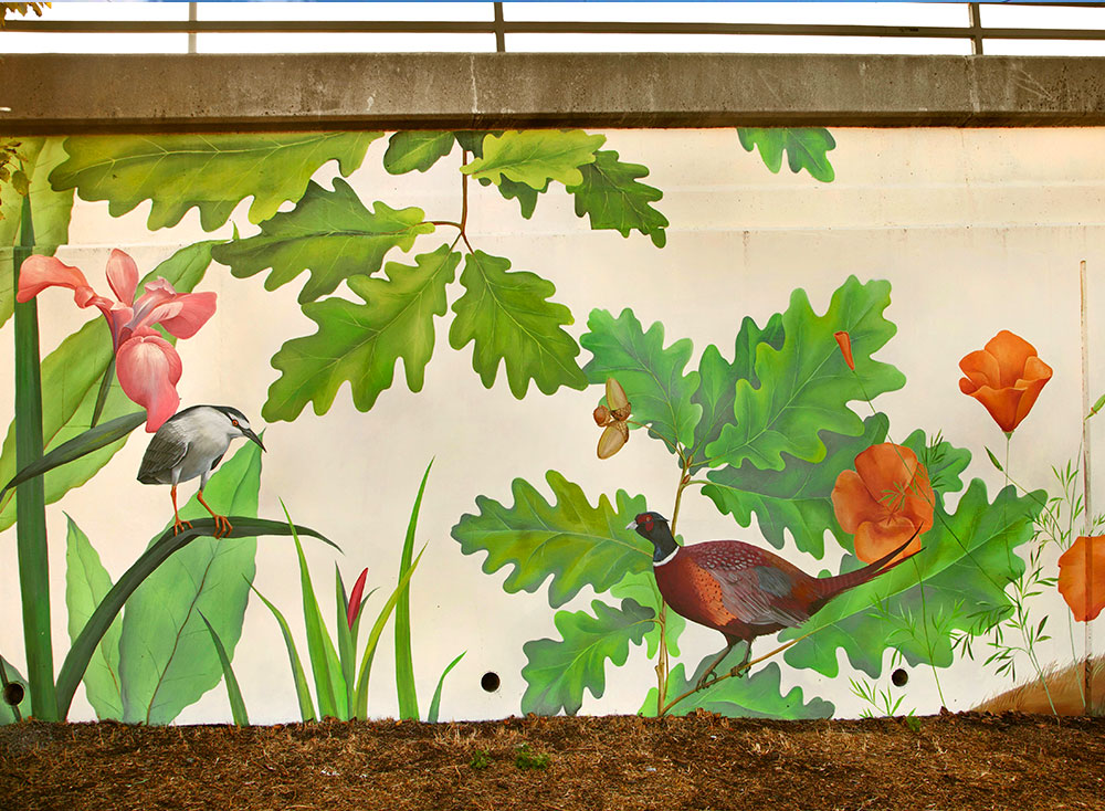 "Mural ""Native Birds and Plants of Northern California"""