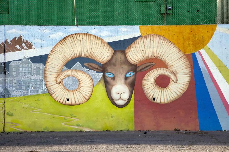 Graffiti_Vandalism_Mural_Viva_Colorado_Alameda_Santa_Fe_drive_I-25_Denver_Muralist_Yulia_Avgustinovich