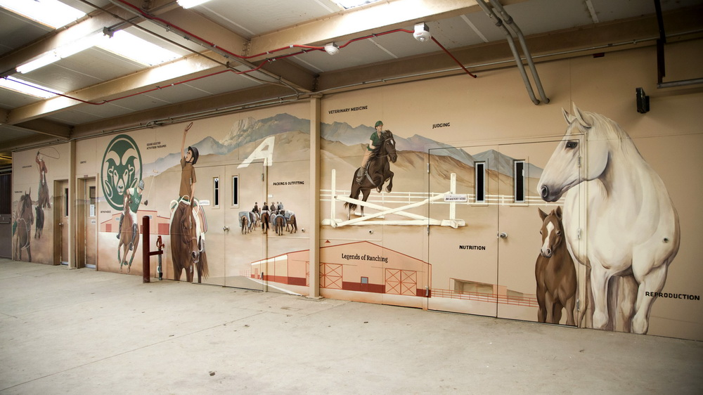 Equine Sciences Mural For Colorado State University