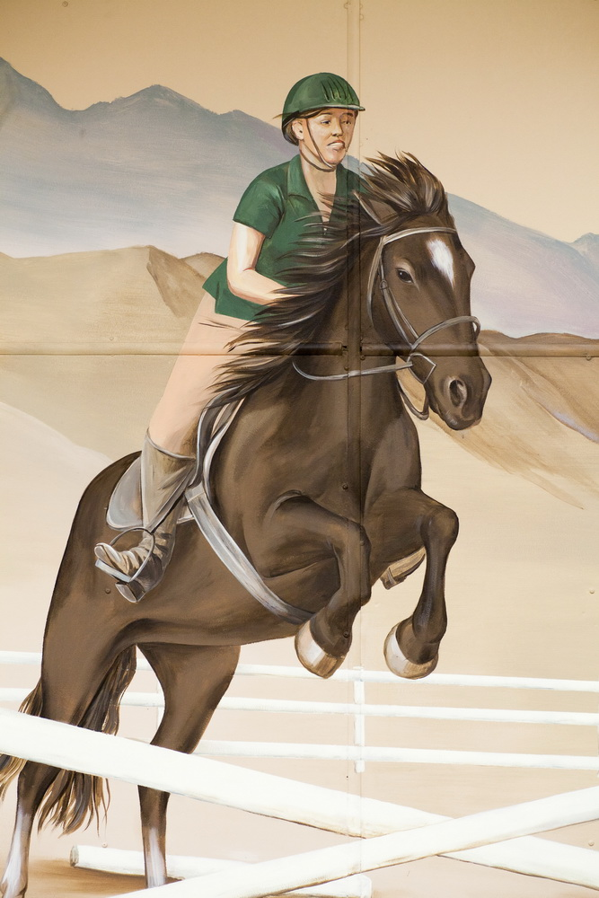 Equine_Sciences_Mural_Colorado_State_University_ Fort_Collins_Yulia_Avgustinovich_Denver_Muralist