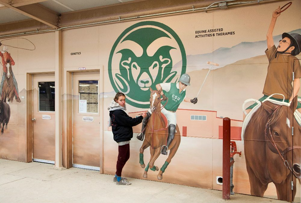 Equine Art Creation for Colorado State University