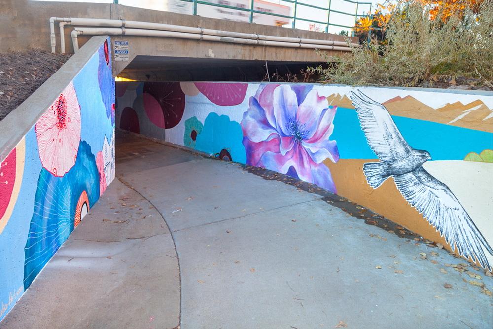Underpass Tunnel Mural Painting Longmont Colorado Art