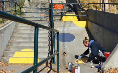 My Painted Stairs Project in Denver CO
